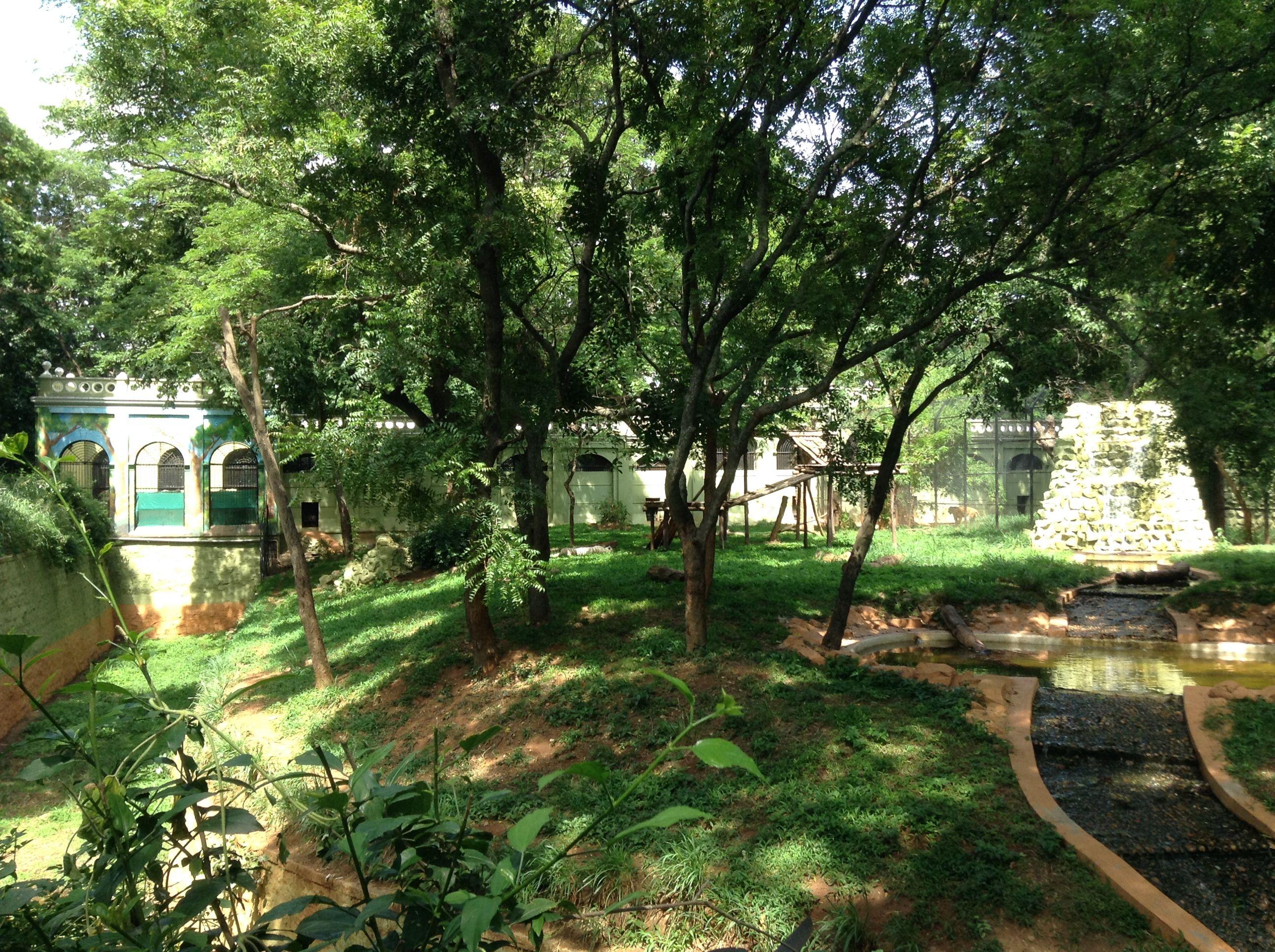 f2bdd3c4c96fea21a472455010491d2d - Mysore Zoo Sri Chamarajendra Zoological Gardens