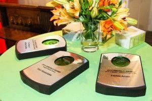 USGBC Illinois Chapter, Emerald Awards