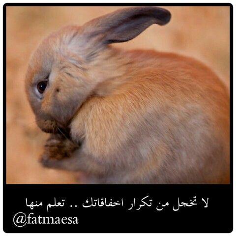 لا تخجل من تكرار اخفاقك ولا تثني نفسك عن الاستمرار في المحاولة تعلم من اخطاءك اشحذ همتك ثم فكر في حلول وطرق جديده صباح الثقه فاطمة عيسى Soft Rabbit Life