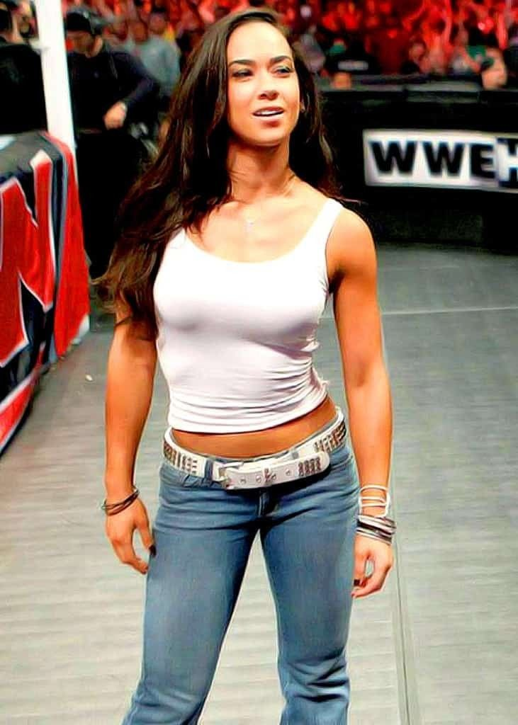 Pin by TAPIA SAÑAY on AJ LEE in 2020 | Aj lee, Now and