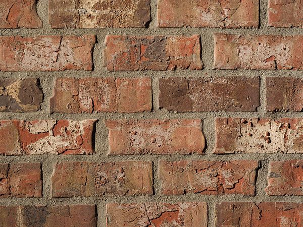Boral Brick Weracoba 2 Thompson Building Materials