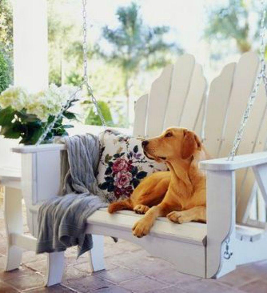 porch Swing♥