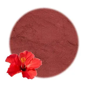 Hibiscus Flower Powder In 2020 Natural Soap Colorants Hibiscus Hibiscus Flowers