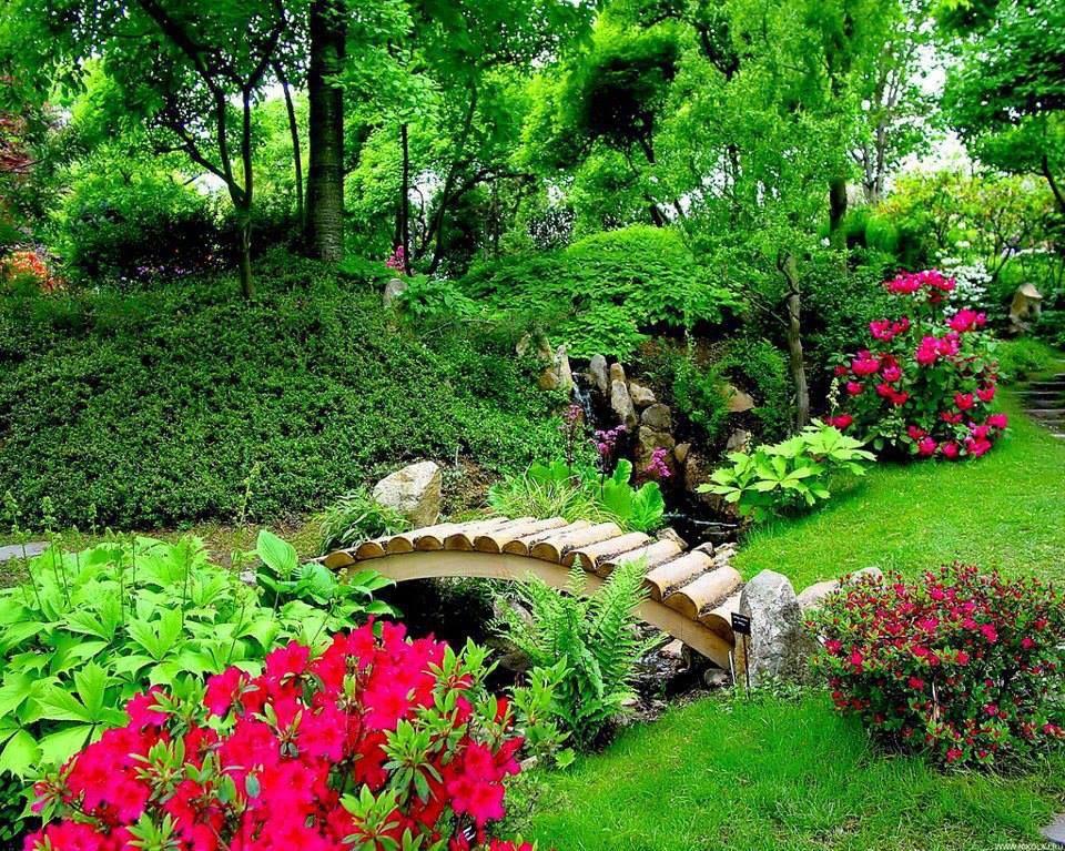 japanese garden flowers gardens trees pinterest