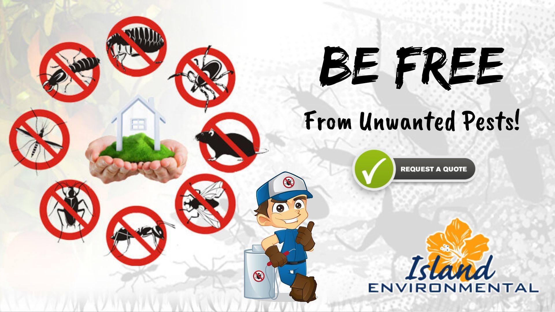 Need An Exterminator Head Over To Island Environmental Pest Control We Are An Experienced Bed Bug Exterminator With Years Of Pest Control Deadly Animals Pest Inspection