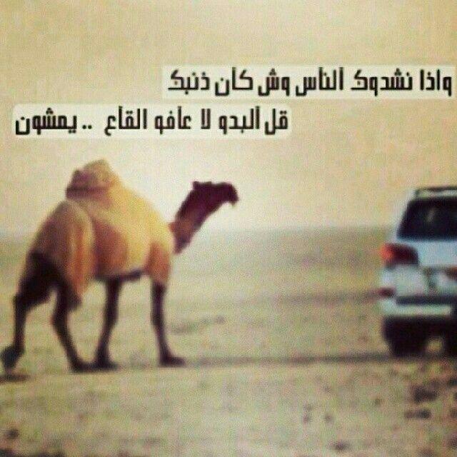 قل البدو لا عافو القاع يمشون Za English Quotes Arabic Quotes Quotes