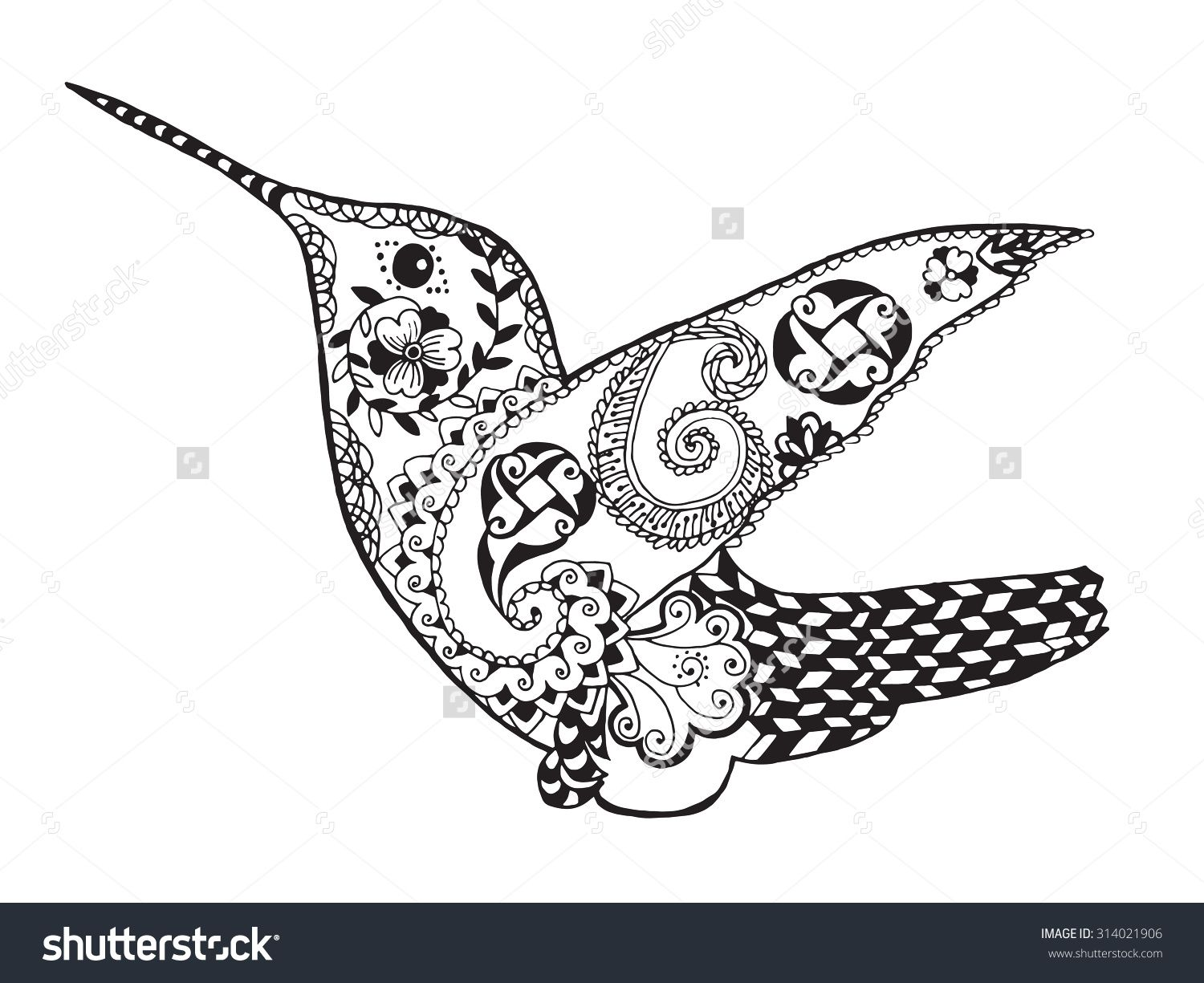 stock vector hummingbird black white hand drawn bird animal floral