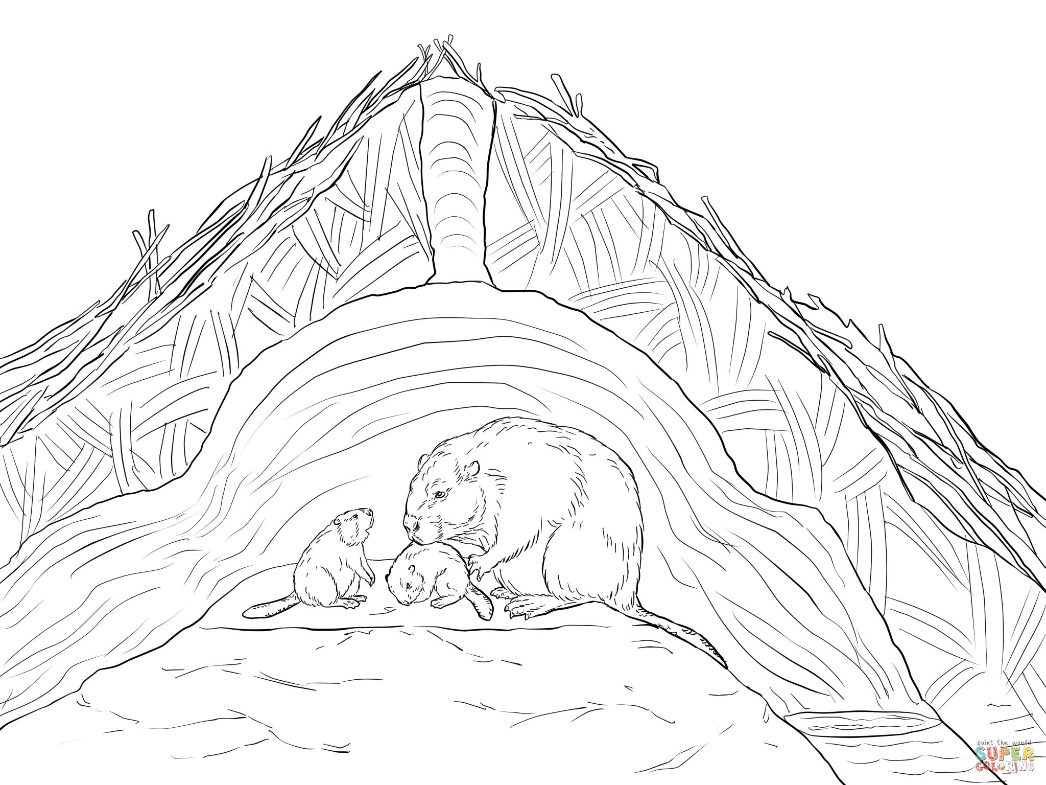 Beaver Lodge Coloring Page Supercoloring Com Beaver Coloring