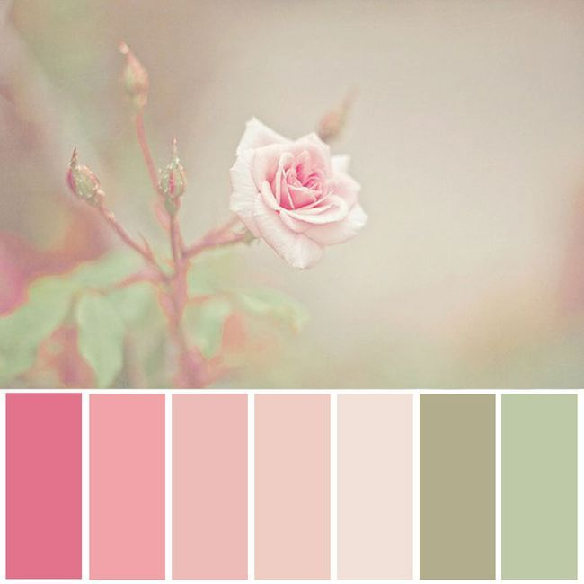 Pinks Greens Nice Color Scheme Shabby Chic Colors Color Palette Pink Colour Schemes