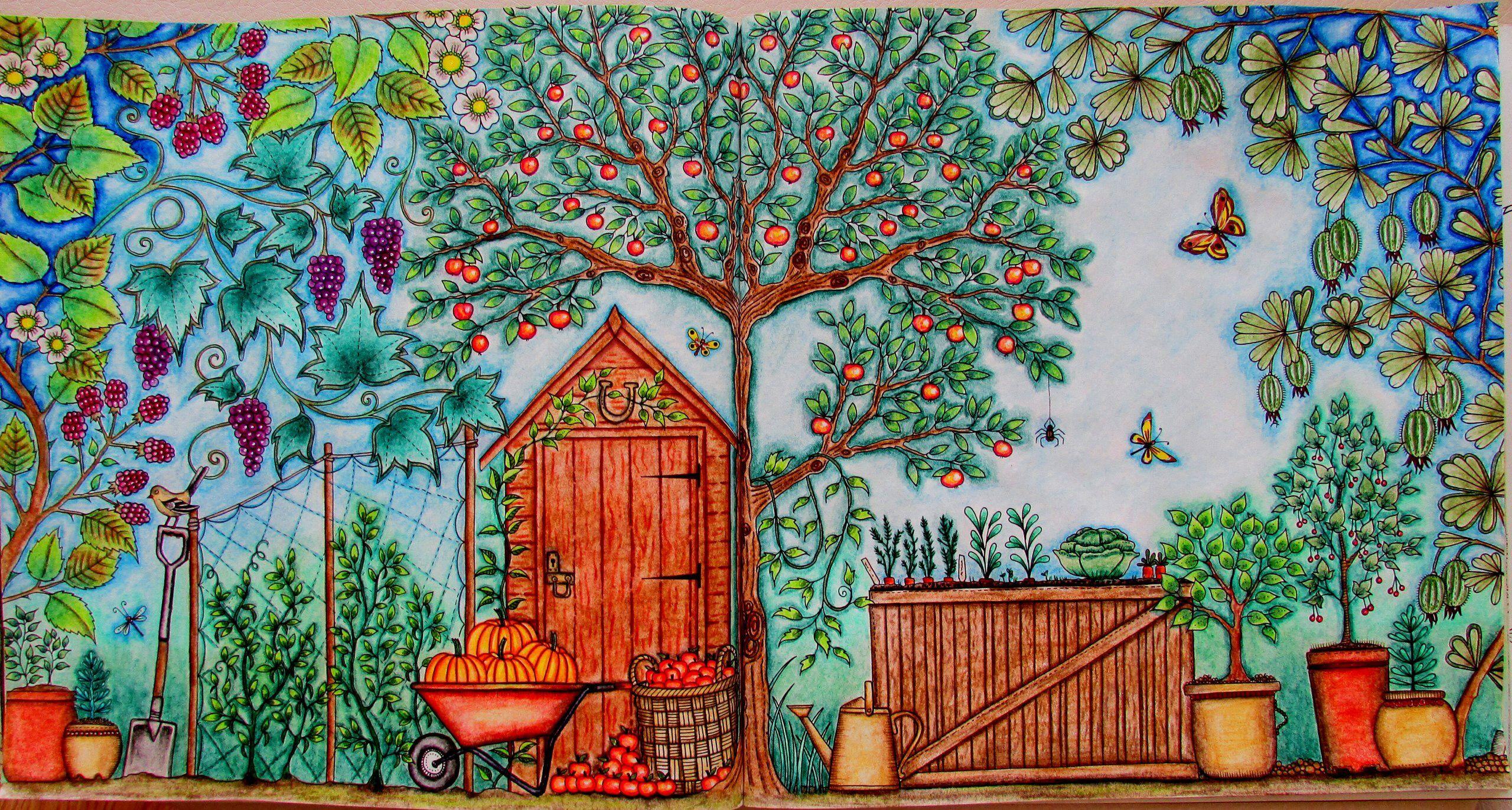 Таинственный сад примеры раскраски, прикольные