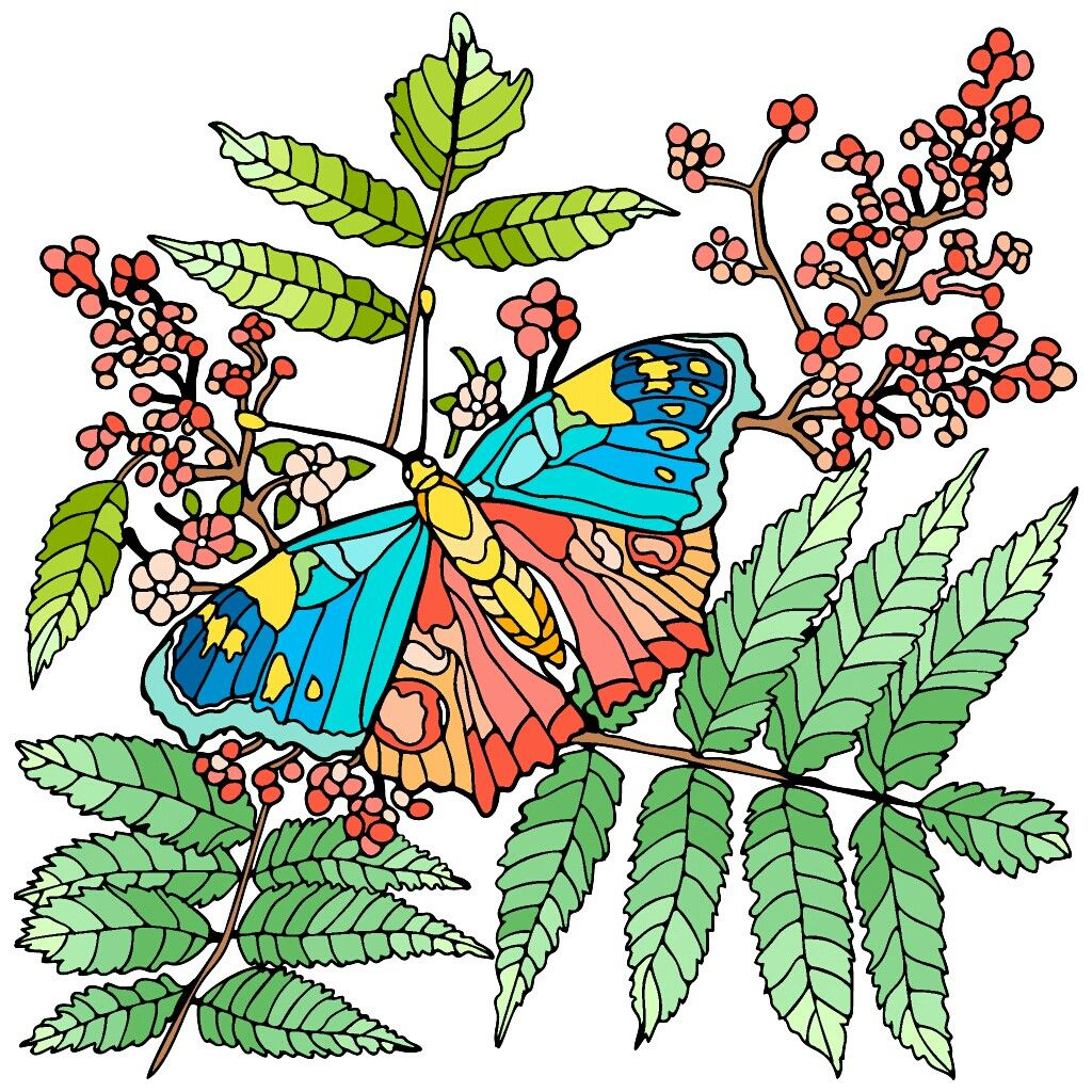 Pin By Titorova On Fonar Plant Leaves Colorful Art Coloring Pages