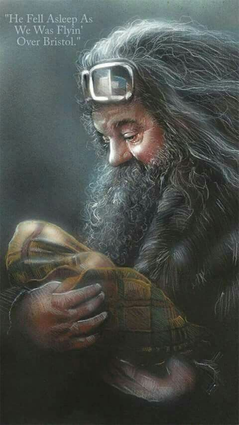 Hagrid & Orphan Harry