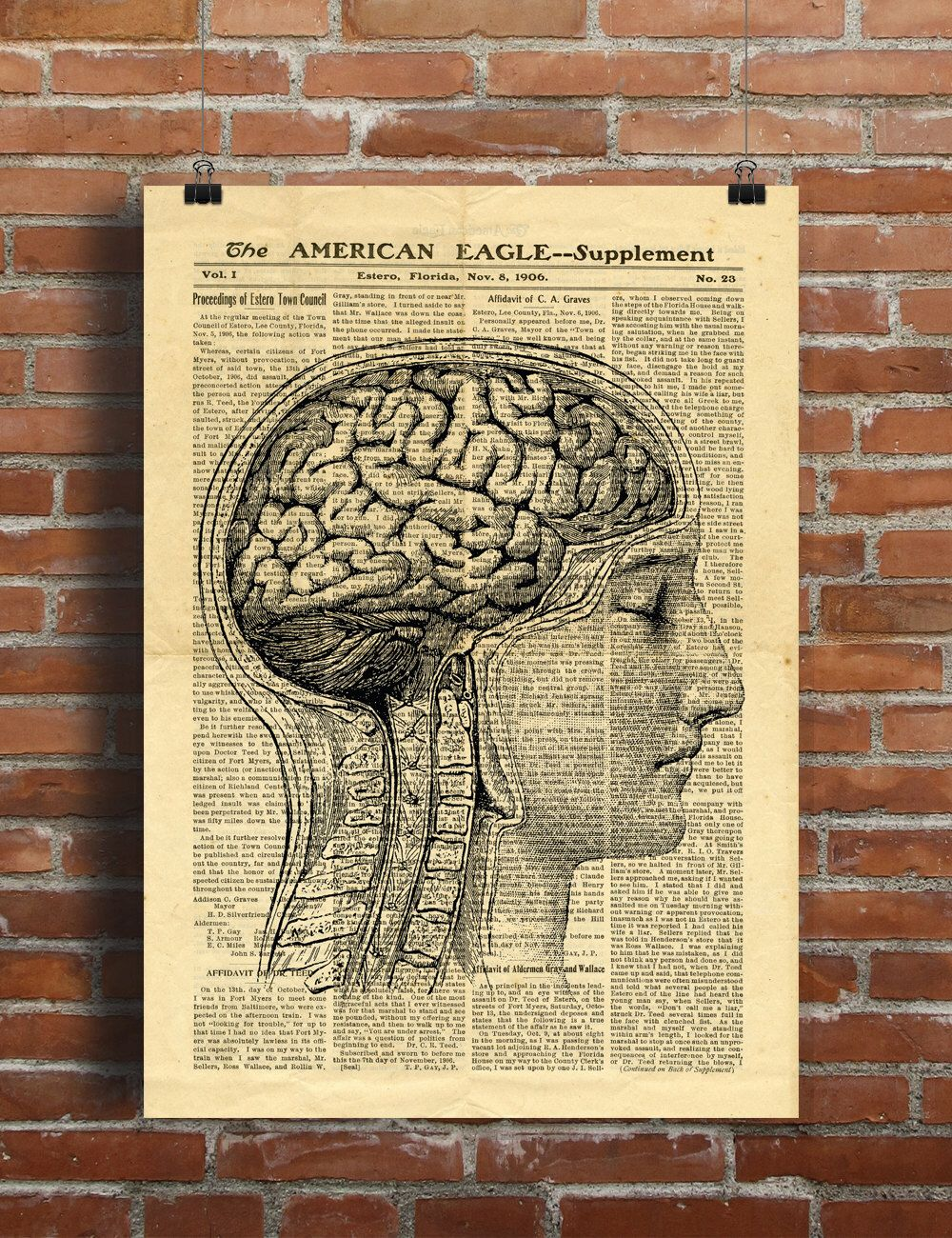 Human Head Brain Anatomy Science Vintage Printable Collage Old ...