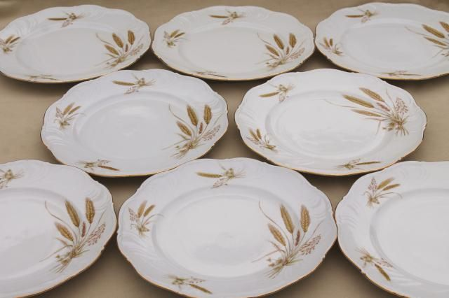 This is a set of eight diameter dinner plates in good condition without chips or cracks just a little light wear. & Winterling Bavaria autumn harvest wheat pattern china dinner plates ...