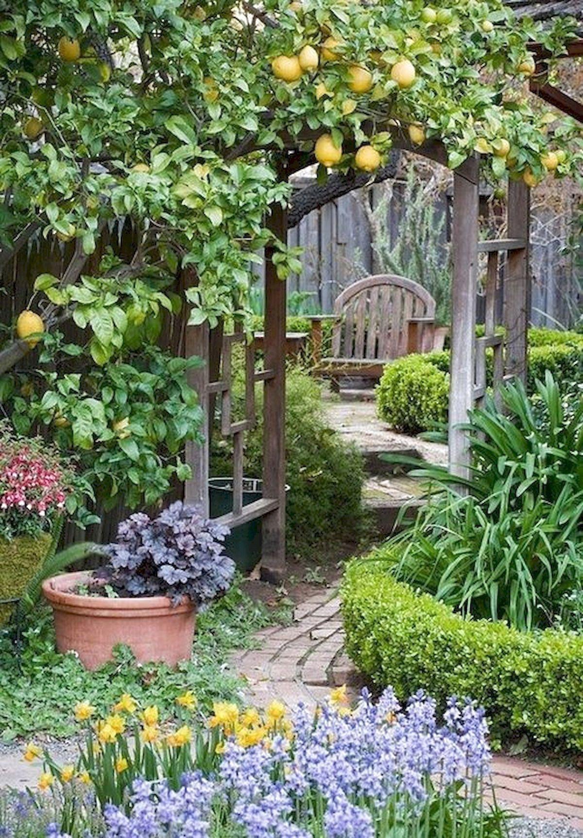45 Beautiful Pinterest Garden Decor Ideas In 2020 Tropical Garden Design Low Maintenance Garden Design Small Garden Design