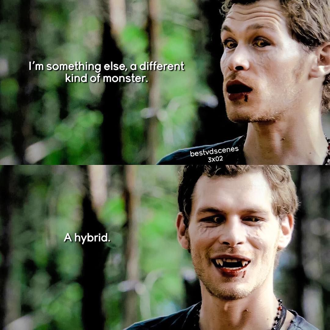 3x02 My Fav Male Character In To Klaus Mikaelson Welovetvdandto