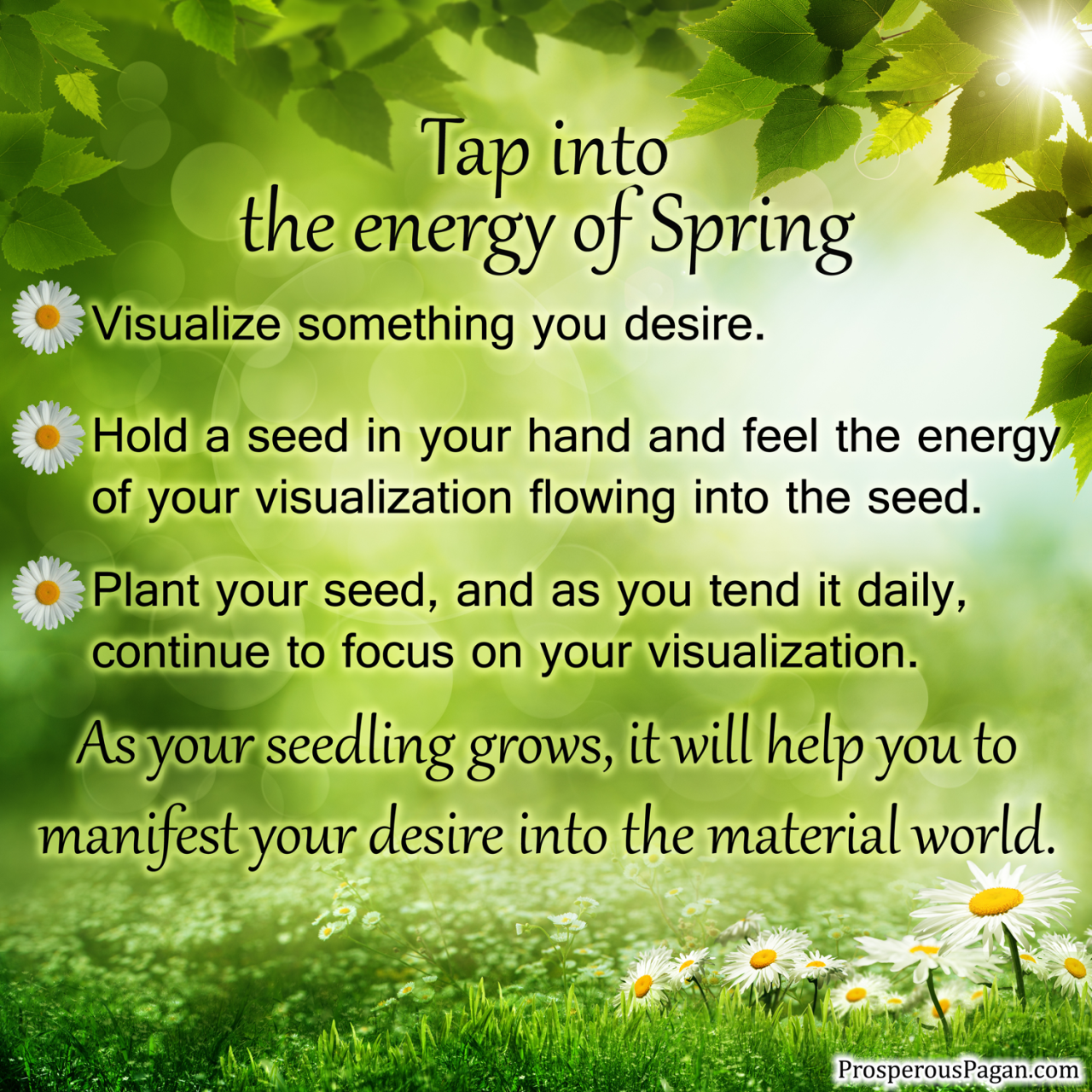 Tap into the energy of Spring.