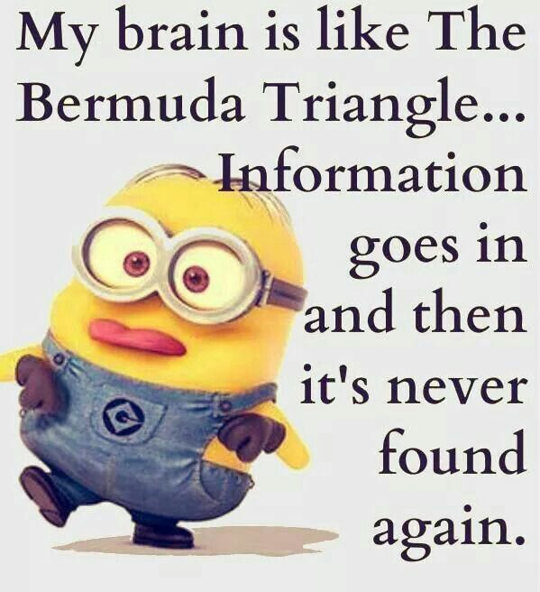 Math Quotes Funny Minion: Top 40 Funny Minions Quotes And Pics