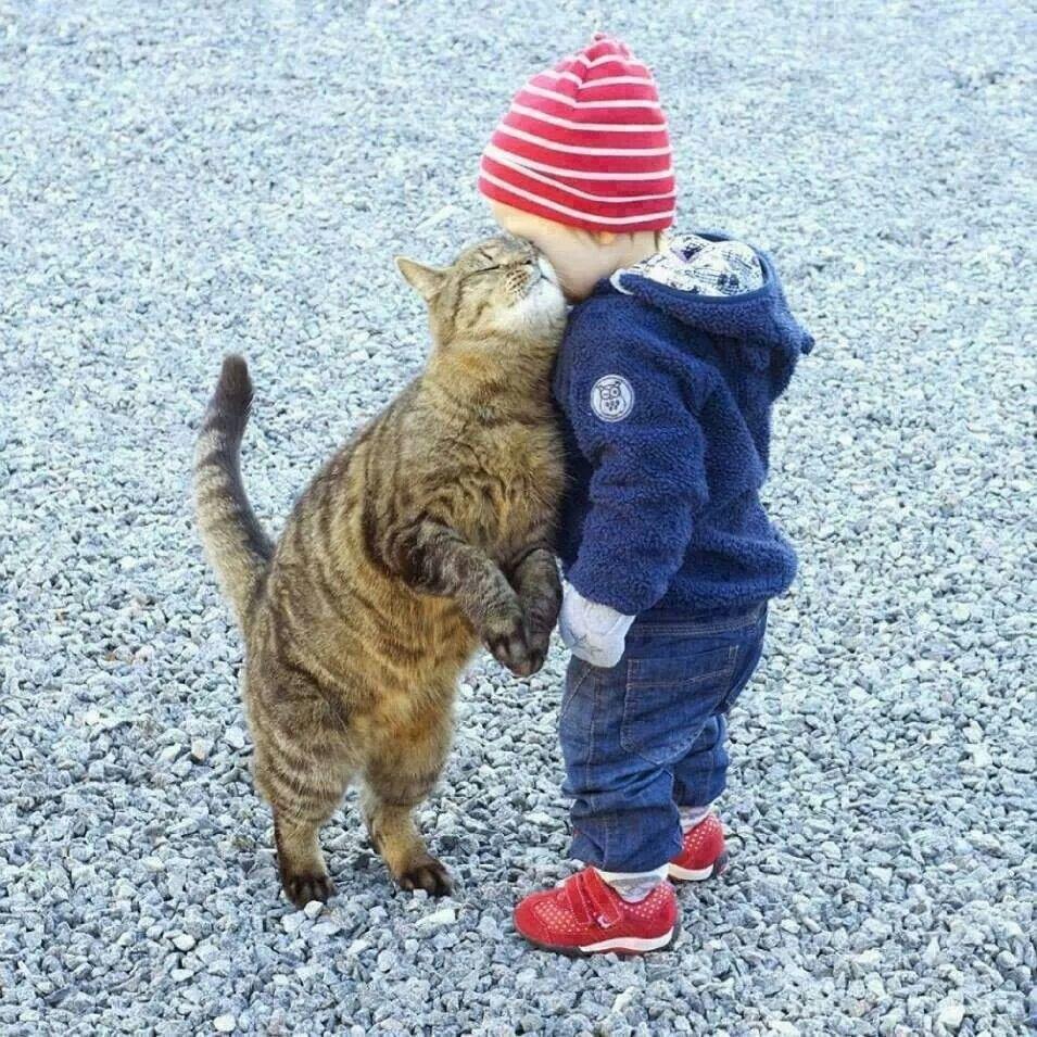 Pin by heidi hassett on Kisses Cute animals, Animals