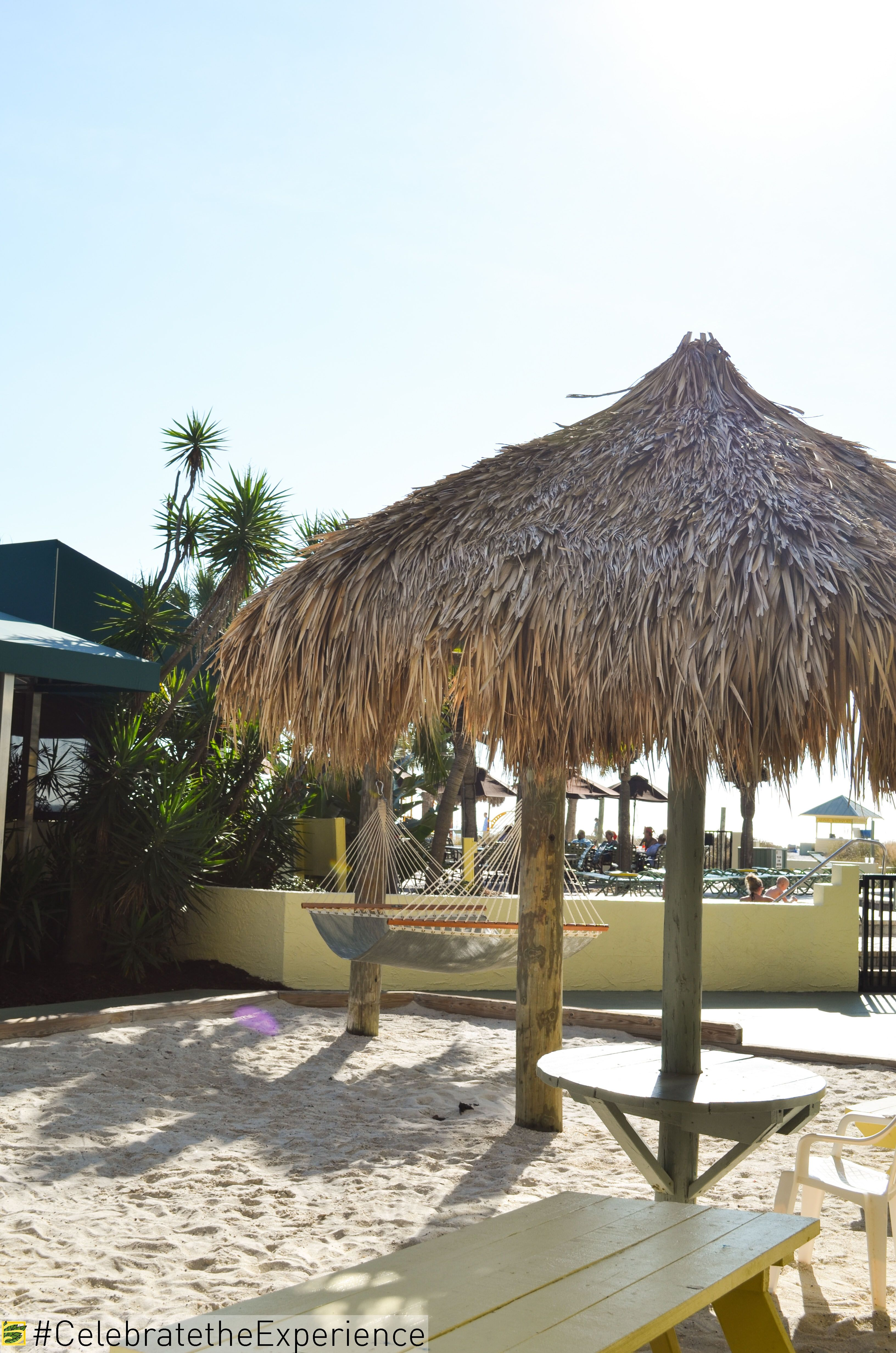 Tiki Huts In The Sand Sirata Beach Resort Fun Sun Warm Vacation Tropical Bench Hammock Pool Bar Florida Summer Family