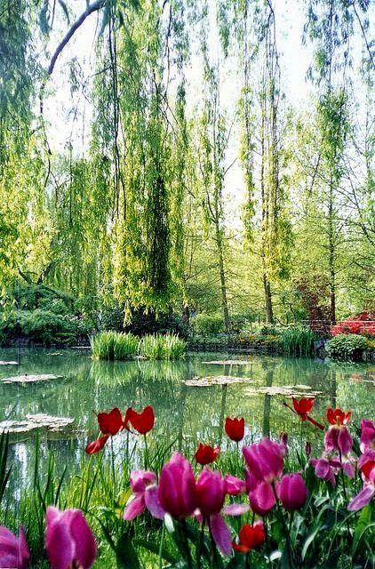 Giverny, France Jardines Pinterest Paisajes, Jardines y Lugares - paisajes jardines