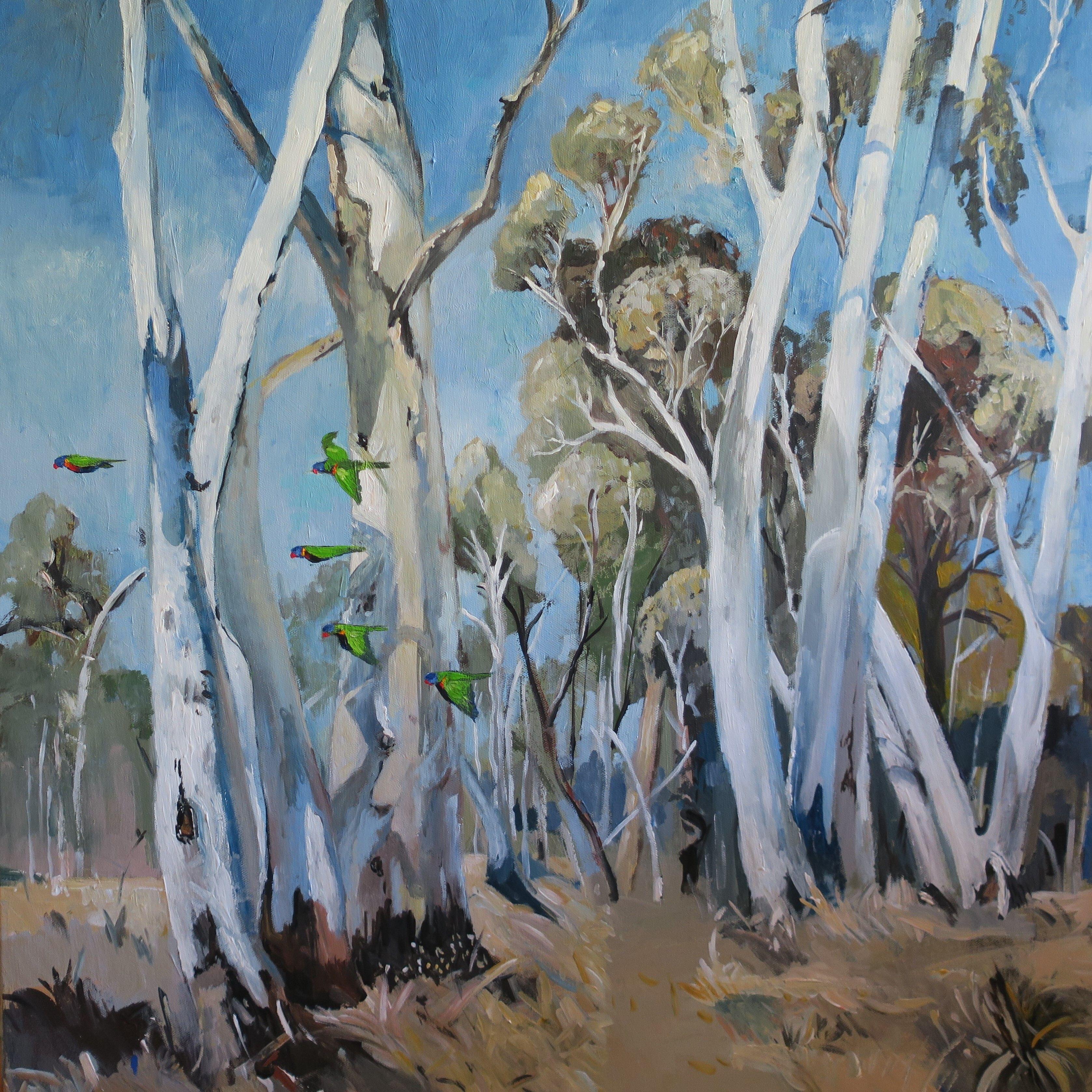 """Australian Landscape Gum Trees and Lorikeets"" by Susan"