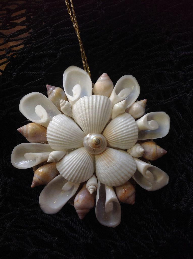 shell mirror ornament seashell christmas ornaments