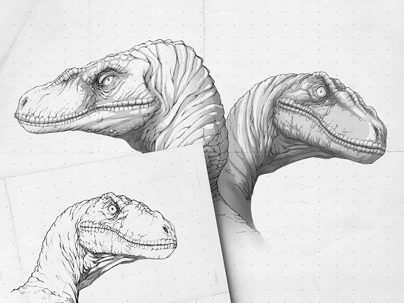 Jurassic World: Raptor Sketches | Parque jurásico, Jurasico y Dibujo ...