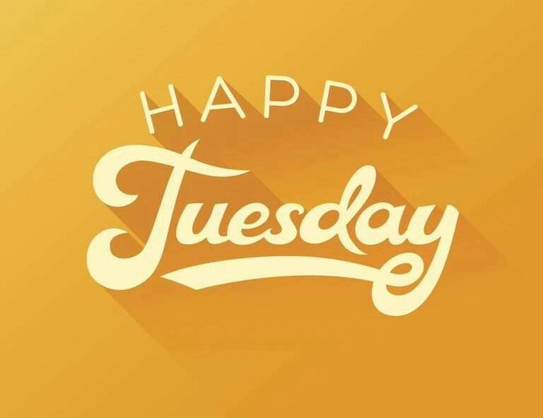 Happy tuesday little d on the monocacy pinterest happy happy tuesday m4hsunfo