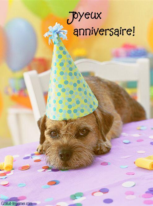 Carte de voeux anniversaire gratuite chiot 2012 gratuit imprimer carte d 39 anniversaire - Photo de chiot a imprimer ...