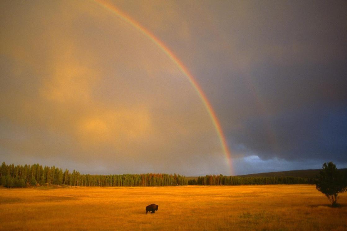 spectacular rainbows