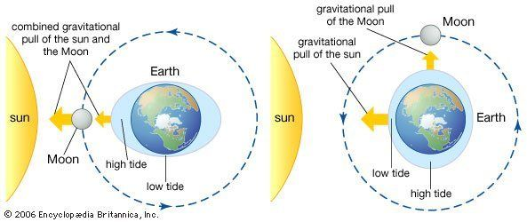 Tides Diagram Sun And Earth Space And Astronomy Tide