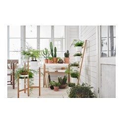Satsumas Plant Stand With 5 Plant Pots Bamboo White