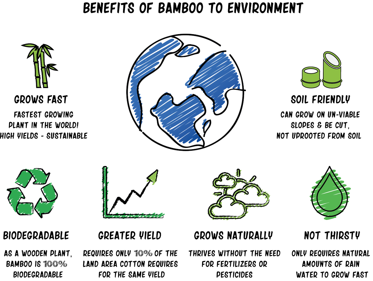 Benefits Of Bamboo To Environment Greenycloud Makeupremoverpads