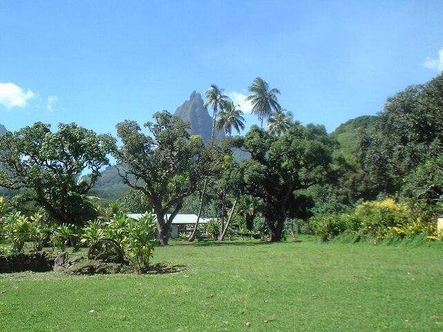 Polynesia >Moorea