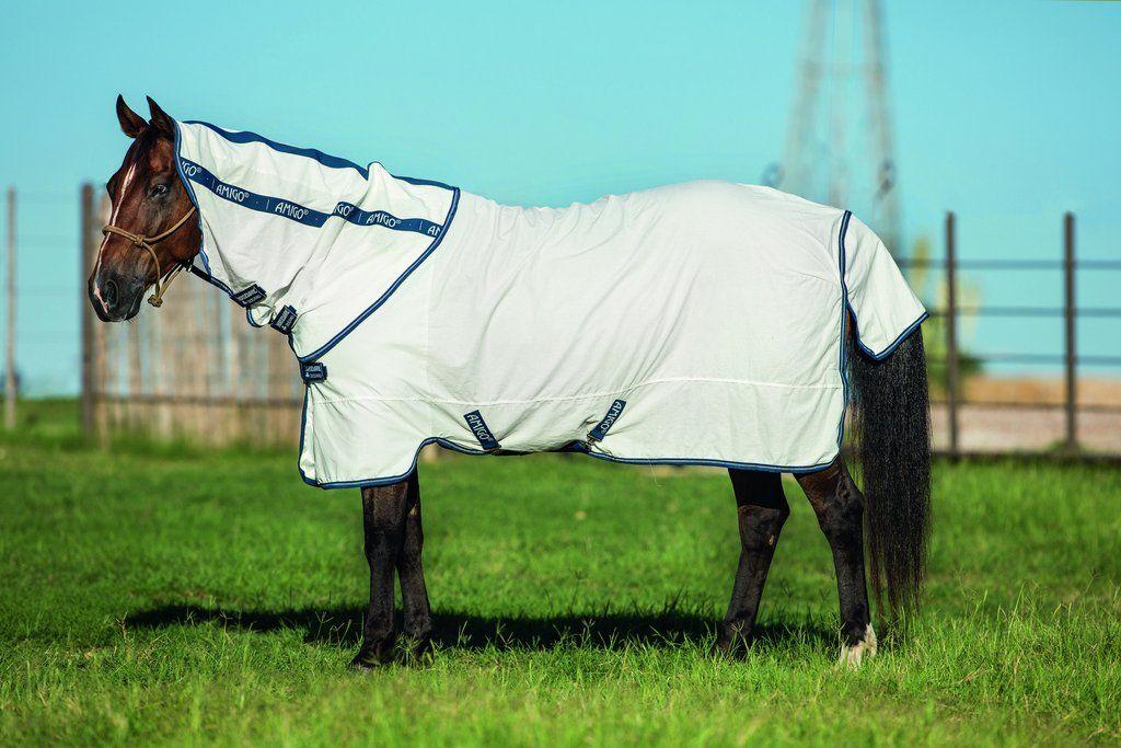 Amigo Flag Horse Rugs Amigos Horses