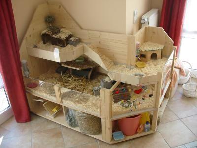 etagenbauten piggies meerschweinchen gehege meerschweinchen und meerschweinchen k fig. Black Bedroom Furniture Sets. Home Design Ideas