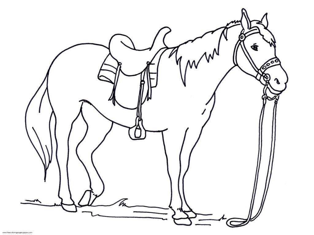 Coloring Pages Engaging Horse Coloring Pages: Free ...