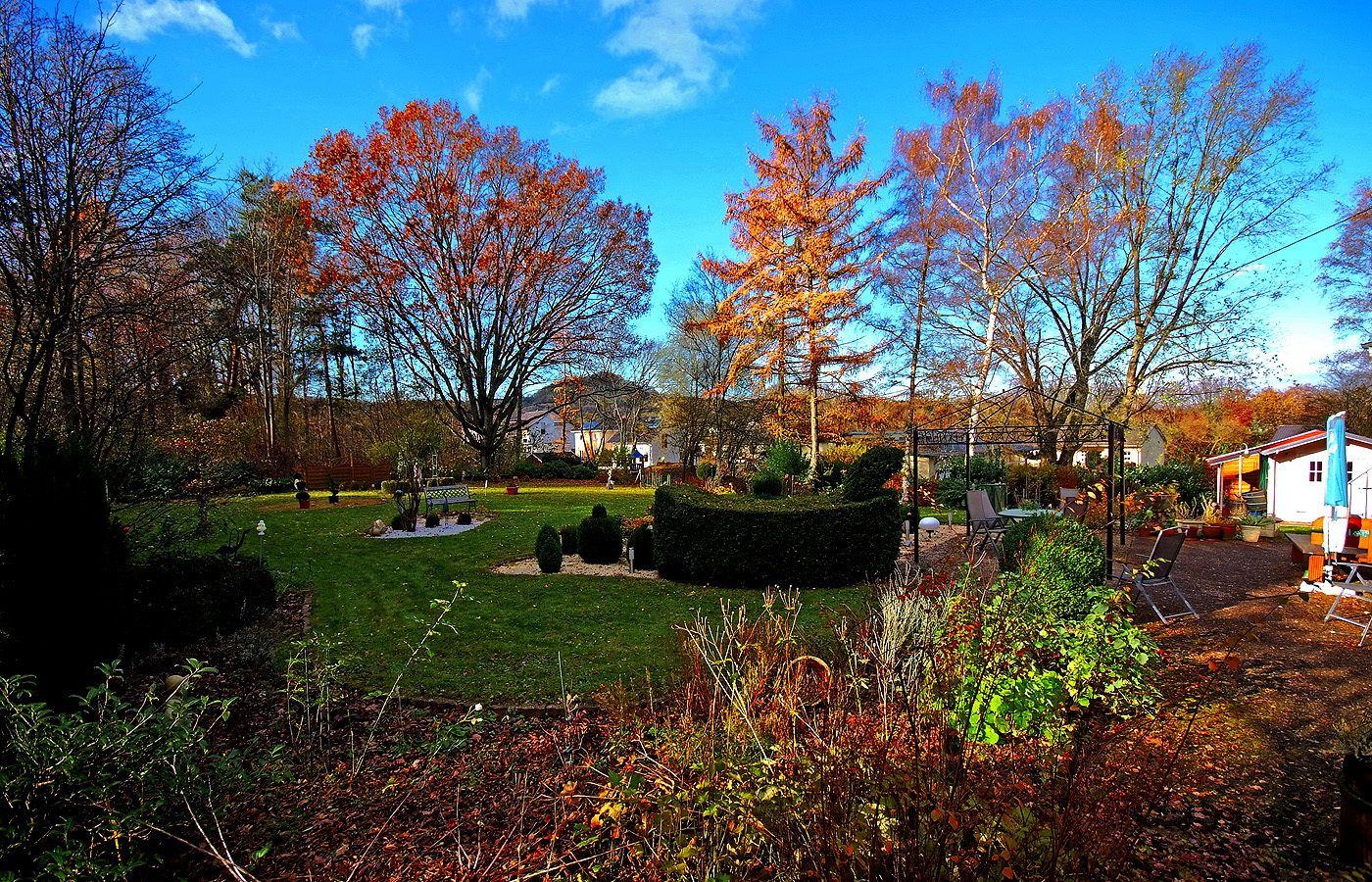 Wenn Ich Aus Meinem Fenster Schau Ist Der Himmel Ziemlich Blau Auch Das Herbstlaub Ist Noch Da Ist Dieser Blick Nicht W Herbstlaub Laub Himmel