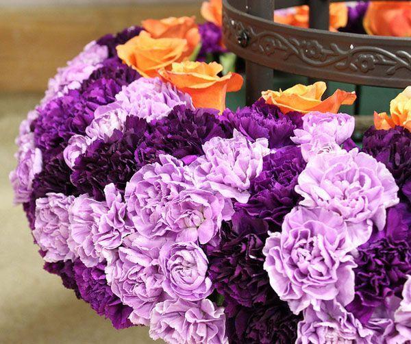 claveles gipsfilas y otras flores para bodas que te ayudarn a no gastar de ms