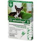 Advantage II Once-A-Month Topical Flea Treatment for Dogs & Puppies