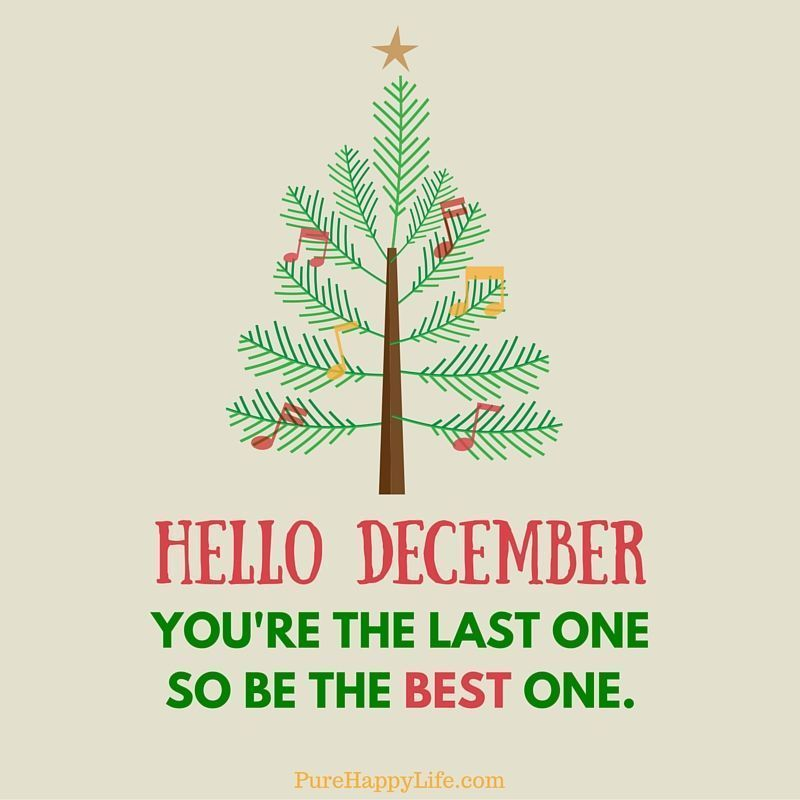 Hello December, You're The Last One So Be The Best One #hellodecember Hello December, You're The Last One So Be The Best One december hello december december images december quotes and sayings december image quotes december pictures hello december 2016 #hellodecemberwallpaper Hello December, You're The Last One So Be The Best One #hellodecember Hello December, You're The Last One So Be The Best One december hello december december images december quotes and sayings december image quotes december #hellodecemberwallpaper