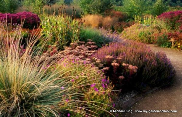 Perennial meadow at scampston hall northern england for Piet oudolf pflanzen