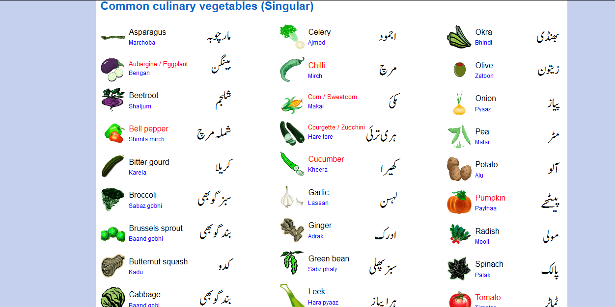 Urdu English vegetables | URDU NYELV | Nyelv