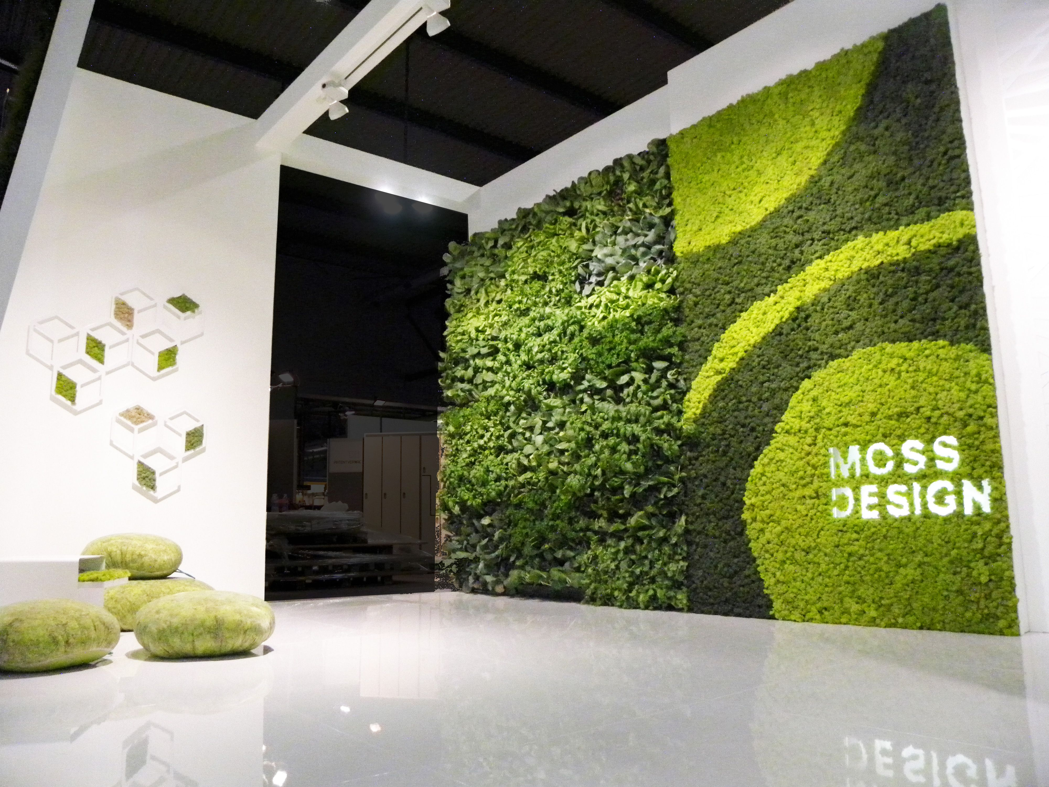Moss wall projects made expo 2011 milano italy for Garden design milano