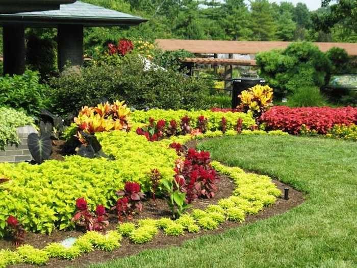 vordergarten pflegeleicht gestalten, viele dekorative gartenpflanzen - pflegeleichter garten modern