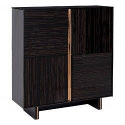 Monzo wardrobe 2 doors black wood golden steel