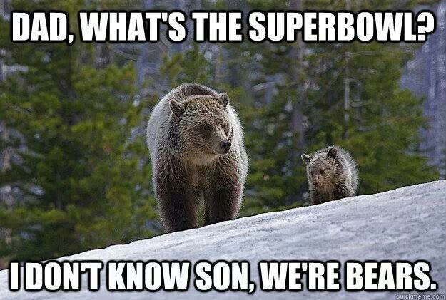 Funny Pictures Of The Day 63 Pics Packers Funny Packers Memes Chicago Bears Memes