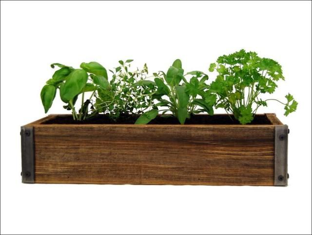 Must Know 60 Awesome Indoor Gardening Ideas | Herb garden kit ...