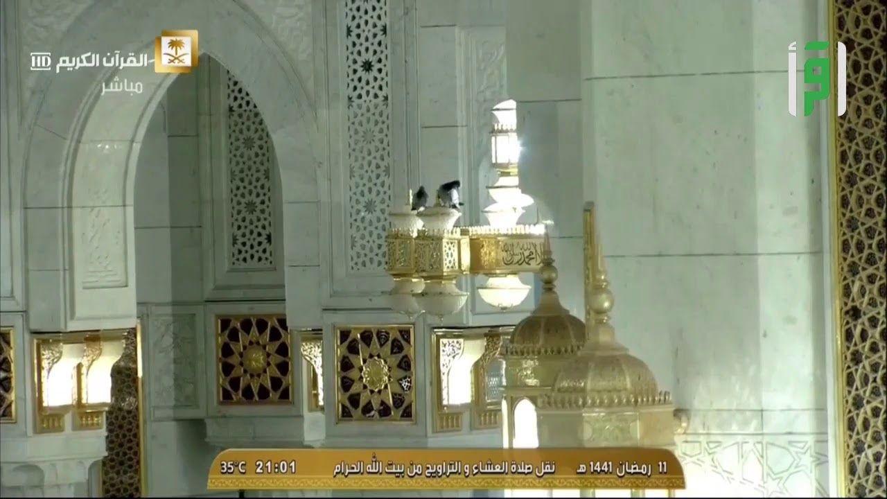 صلاة التراويح من مكة المكرمة مباشر 11 رمضان Ceiling Lights Taj Mahal Ceiling